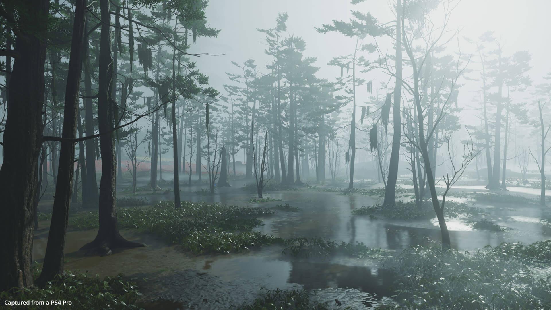 Umugi Swamp 6