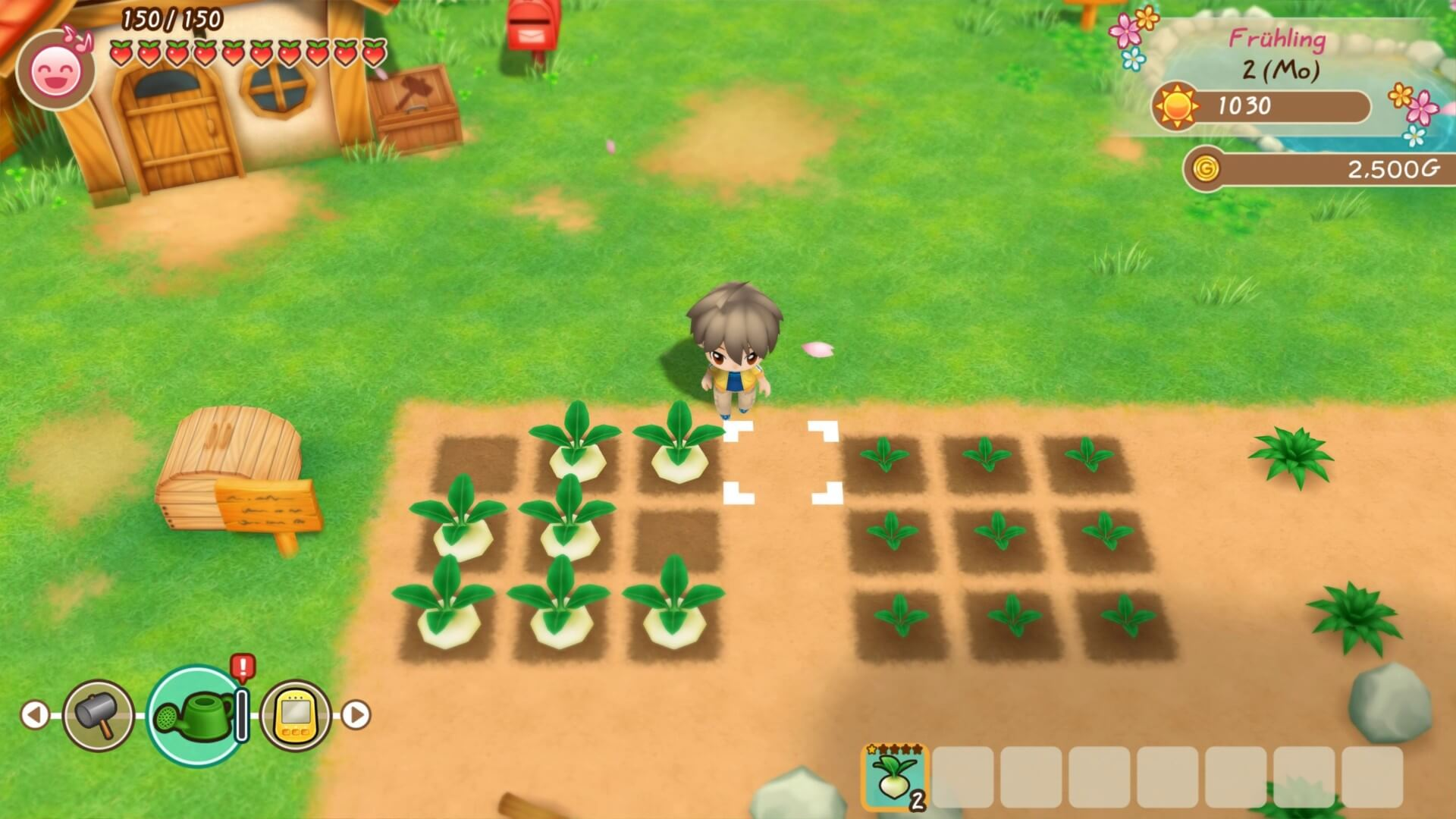 Story Of Seasons (6)